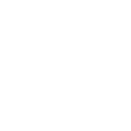 Examining Student Practices Icon